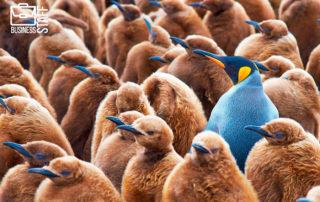 Как выделиться на собеседовании, взгляд со стороны рекрутера